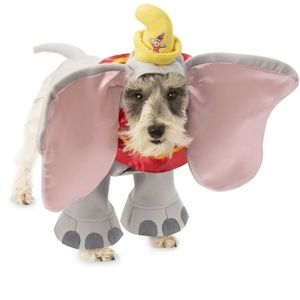 Dumbo dog costume. SMALL DOG